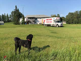 Edmonton to St. Catharines Movers